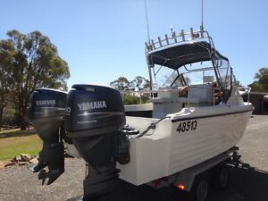 Genuine Bruce Harris Shark Cat Riverside West Tamar Preview