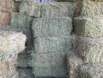 FOR SALE - LUCERNE & OATEN HAY - SEVERAL GRADES AVAILABLE Gundaroo Yass Valley Preview