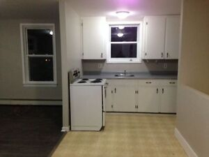 NEWLY RENOVATED 2 BEDROOM APARTMENTS