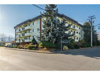 Big Apartment – Little Price - 106-9417 Nowell St.