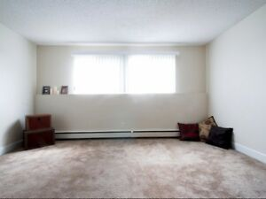 Renovated One Bedroom Apartment Available - Call (306)314-0155