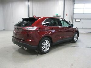 2016 Ford Edge SEL Moose Jaw Regina Area image 7