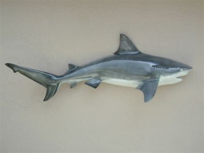 - New Fiberglass Bull Shark Fish Mount
