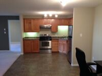 SPACIOUS NEW 2BR CONDO, ACROSS FROM LRT STATION