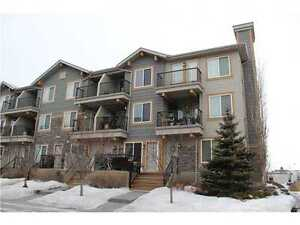 1 Bed, 1.5 Bath LOFT available in McKenzie Towne