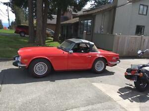 tr6 for sale