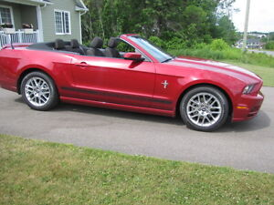 "2013 ""Pony"" Mustang Convertible"
