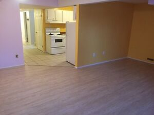 Spacious and bright 2 BR basement suite in Riverdale