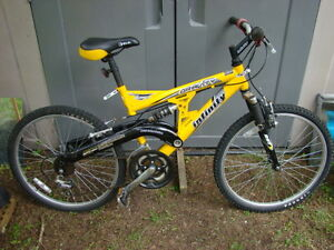 Infinity Gravity 21-speed Dual Suspension Youth Bike