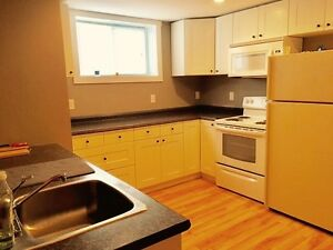 Fully renovated one bedroom appartment
