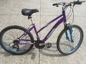"24"" Schwinn Girl's Mountain Bike"