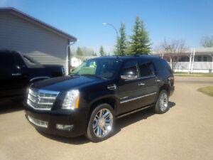 """2011 Cadillac Escalade SUV, Crossover """"Platinum Edition"""""""