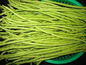 Backyard snake beans for sale Mirrabooka Stirling Area Preview