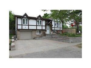 Available for March 1st ,3+1 bedrooms  bungalow   in Kitchener