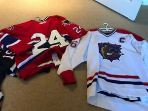 AHL & NHL — bulldogs jerseys
