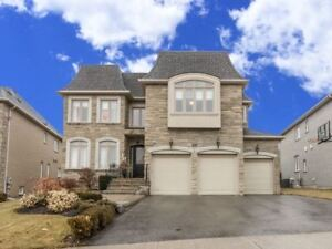 IMMACULATE Luxury Home in Vaughan at 237 Flamingo Rd