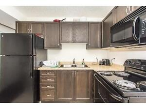 STUDENT ROOMS FOR RENT GROUPS OR INDIVIDUALS WELCOME !!! Kitchener / Waterloo Kitchener Area image 8