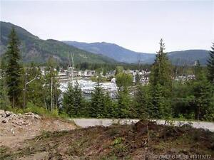 Location! Location! Lakeview Acreage!