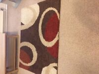 ***VERY NICE LIVING ROOM RUG FOR SALE - MUST VIEW!!***