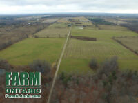 Incredible Location. Large Country Estate with Income Potential!