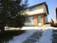 One upstairs Room In Edgemont For Rent