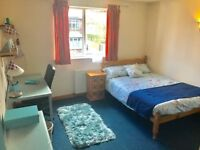 Large Double room to rent in shared house.