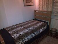 Single ASH Bed Frames for sale