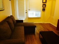 Furnished bachelor available immediately - Dec special!