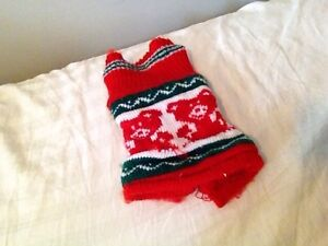Christmas outfit for guinea pigs