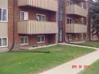 Well maintained 2 bed South Calgary Condo under $200K