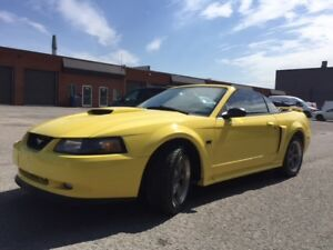 2001 Ford Mustang  GT. 4.6L.Cuir. Convertible. 5 speed.