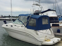 SeaRay 240 –powered by a 200hp Nanni Turbo diesel