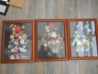 Framed Pictures of Flowers Set of 3