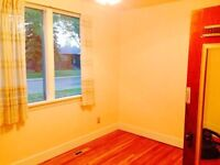 Multiple nice bedrooms close to university for rent
