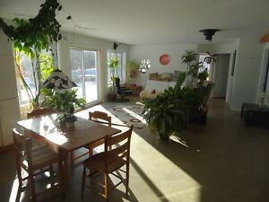 Warm, Bright, bungalow - Edge of Gatineau Park