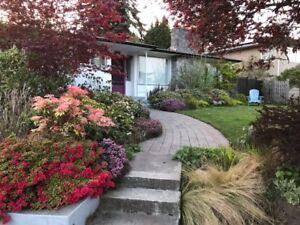 Spacious furnished bedroom Oak Bay Home $550