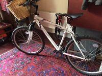 Apollo Elusion Mountain Bike