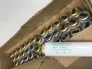 53 T12 light bulbs cool white