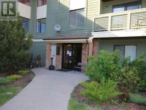 112 - 185 CHAMBERLAIN CRESCENT TUMBLER RIDGE, British Columbia