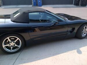 2004 Convertible Corvette for SALE
