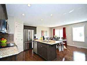 specious and nice basement to rent