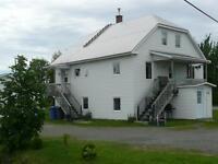 Maison - à vendre - Saint-Antonin - 19482945