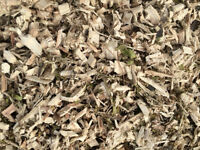 Mississauga Wood Chips July 2