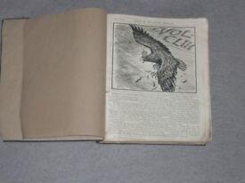 PUNCH MAGAZINE or THE LONDON CARIVARI 1917