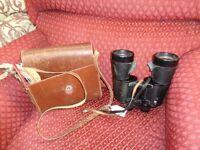 Binoculars 10 x 60 with case