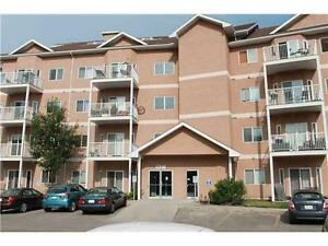 2 Bedrooms Condo for Rent in Clareview