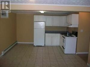 One Bedroom Basement Apartment Heat and Light Included