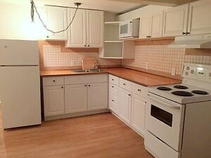 Beautiful Walk out Basement Apartment in Bolton Available Nov.1
