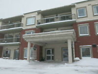 Condominium For Sale - 333 Rue Lafontaine Rd W # 206