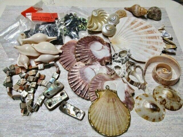 BIG Vintage LOT Arts & Crafts Shells for Mosaics/Jewelry Making/Decoration